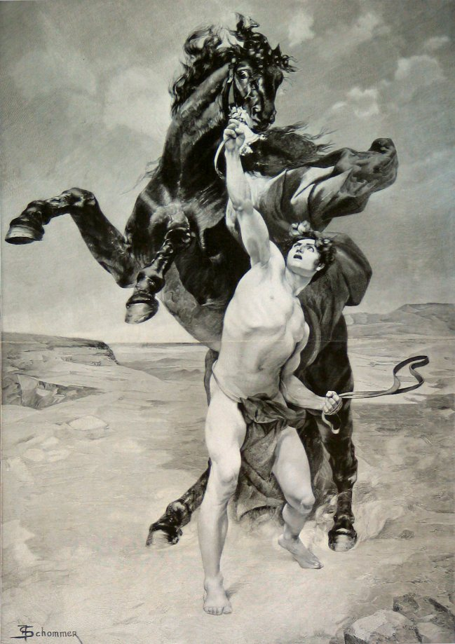 Alexander taming Bucephalus by F. Schommer (late 19th century)